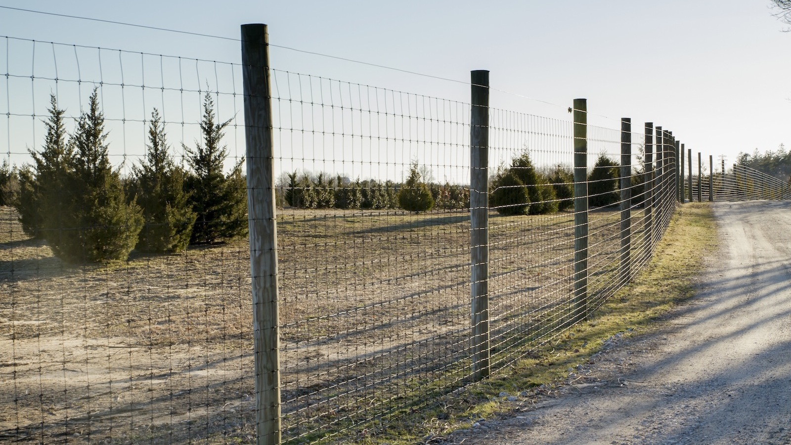 Commercial_Deer_Fence_2